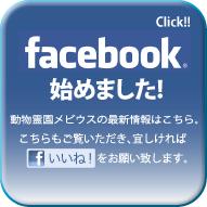 動物霊園メビウスのフェイスブック